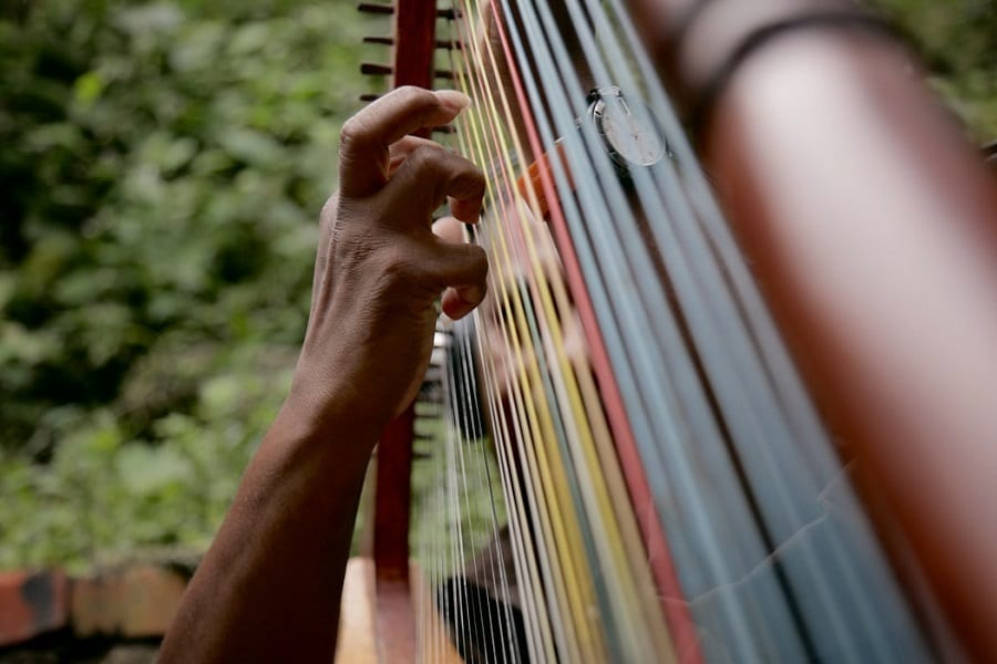 11 Hardest Instruments To Learn