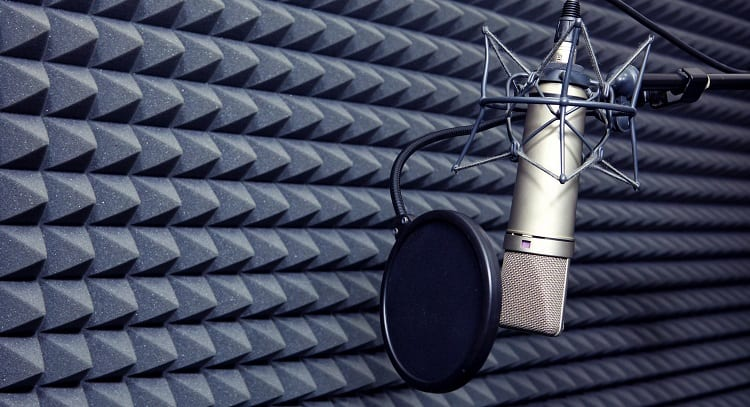 What Exactly Is A Pop Filter?